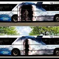 bus-ads-01[1]