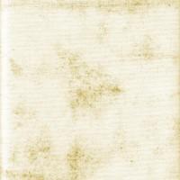 PaperTexture-7[1]