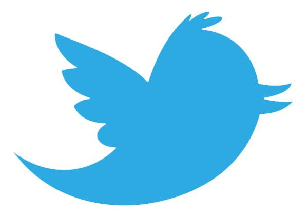twitter logotipo