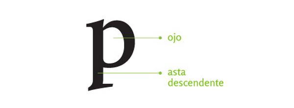 anatomia tipográfica